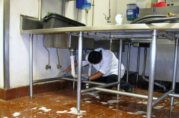 General sanitary for food production