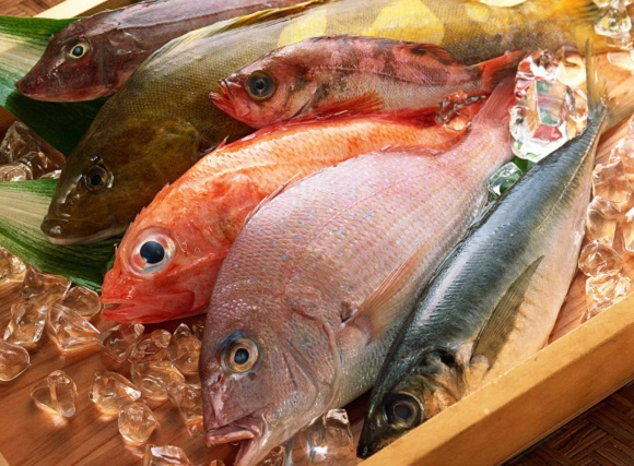 How To Tell If Fish Is Fresh Pos Sector
